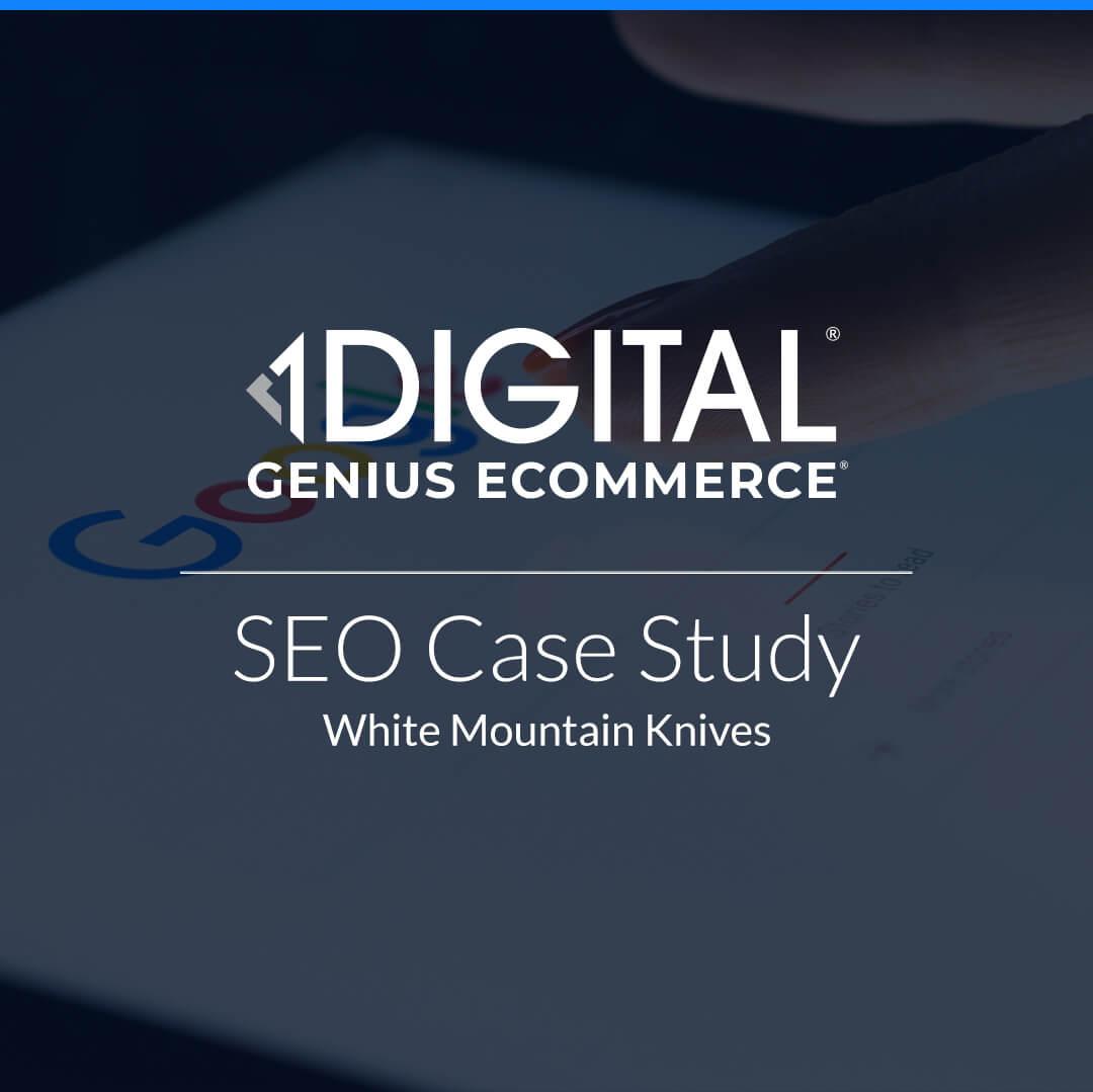 Best eCommerce SEO Company, eCommerce SEO Services